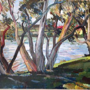 Paperbarks (Centennial Park)